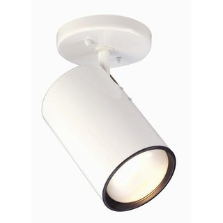 Nuvo Lighting 76/418 1 Light Semi-Flush Indoor Ceiling Fixture - 14 Inches Wide