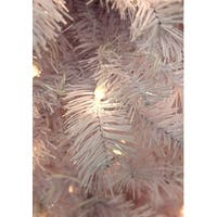 "36"" Pre-Lit White Cedar Pine Artificial Christmas Wreath - Clear Lights"
