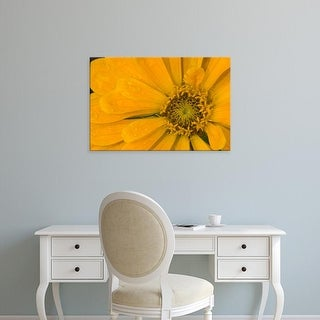 Easy Art Prints Darrell Gulin's 'Yellow Zinnia Close