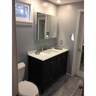 WYNDENHALL Windham Black 2 Door 48 Inch Bath Vanity Set With Bottom Drawer  And
