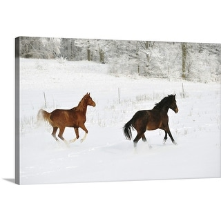 """Horses in snow"" Canvas Wall Art"