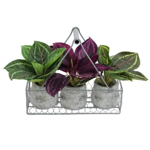Admired By Nature GG7657-GREEN 9.5 in. Tall Artificial Desktop Potted Prayer Plants Burgundy Dark Green & Green - 4 Piece