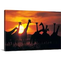 Premium Thick-Wrap Canvas entitled Giraffe herd in silhouette against sunset , Botswana, South Africa - Multi-color