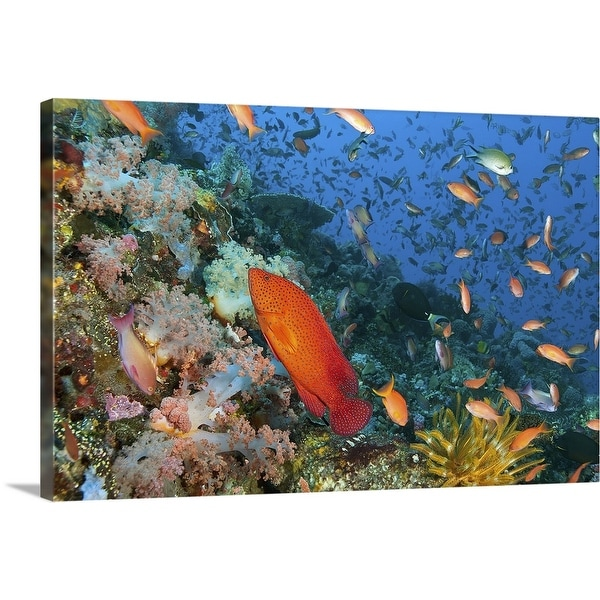 """""""Reefscape with Coral Grouper or Coral Trout"""" Canvas Wall Art"""