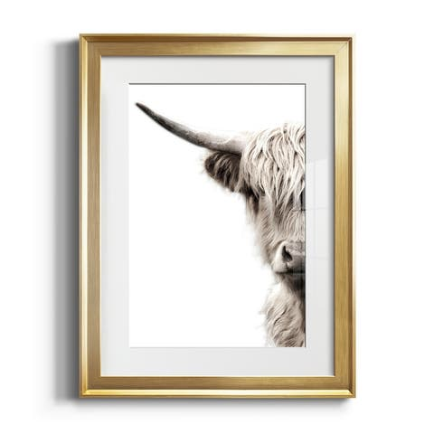 Highland Cattle Premium Framed Print - Ready to Hang