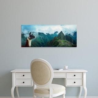 Easy Art Prints Panoramic Image 'Alpaca, archaeological site, Inca Ruins, Machu Picchu, Cusco Region, Peru' Canvas Art