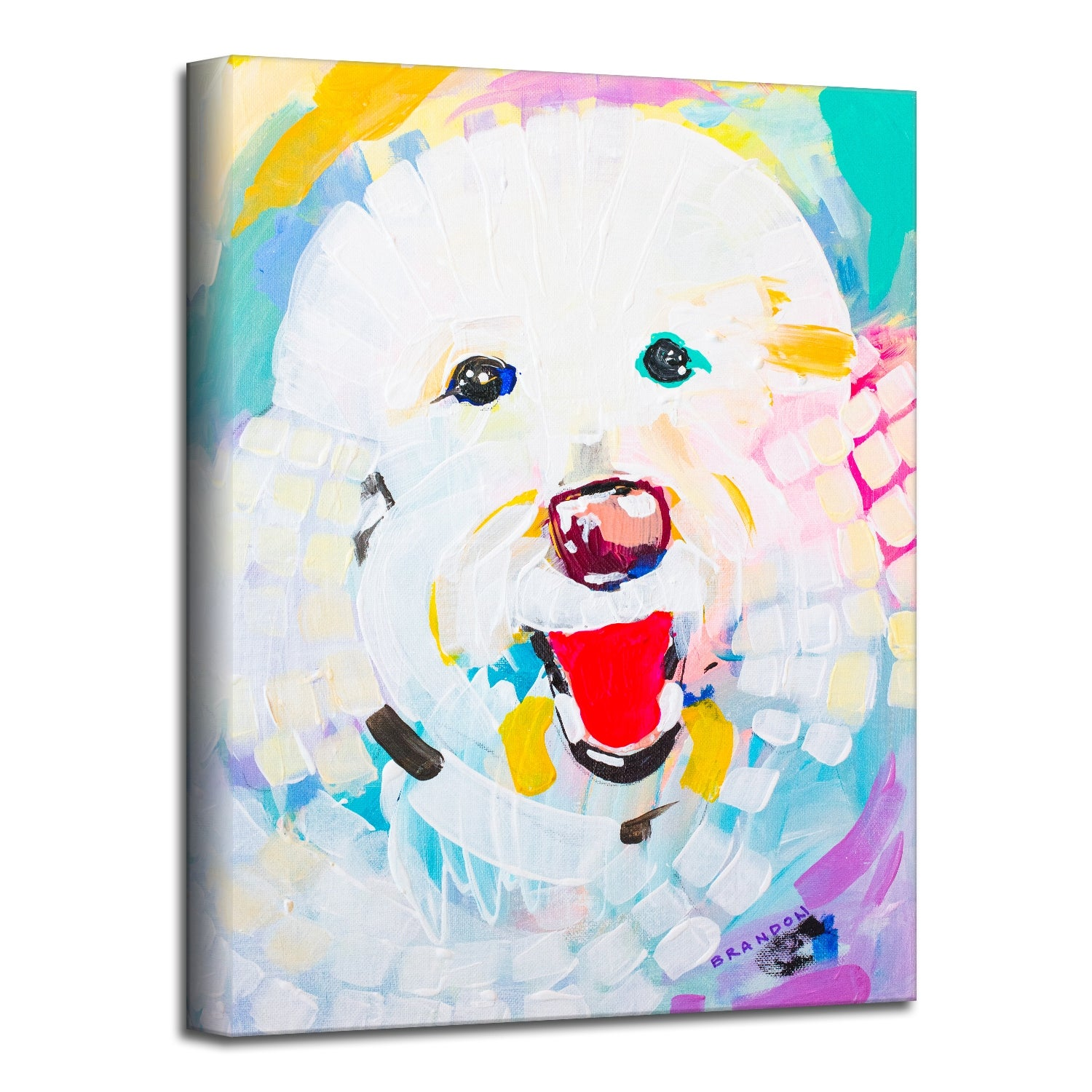 Ready2hangart Colorburst Bichon Pet Canvas Wall Art By Brandon Thomas Overstock 31883205