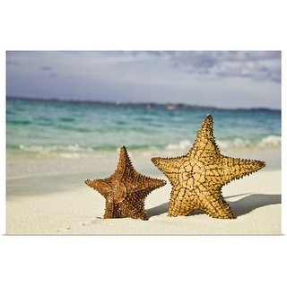 """Starfish on beach."" Poster Print"