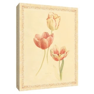 """PTM Images 9-154582  PTM Canvas Collection 10"""" x 8"""" - """"Tulip Study II"""" Giclee Tulips Art Print on Canvas"""
