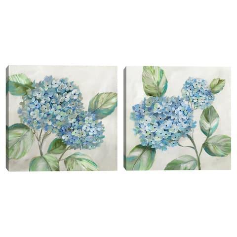 Hydrangea Beauty I & II by Nan Set of 2 Canvas Art Prints