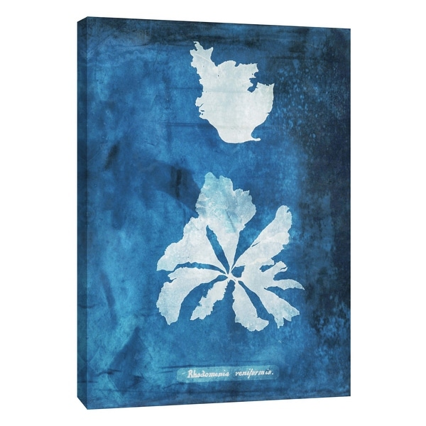 """PTM Images 9-105778 PTM Canvas Collection 10"""" x 8"""" - """"Natural Forms Blue 9"""" Giclee Seaweed Art Print on Canvas"""