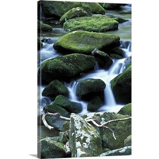 Premium Thick-Wrap Canvas entitled Great smokey mountains, with mossy rocks - Multi-color