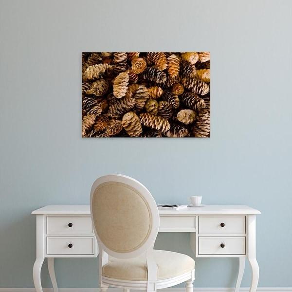 Easy Art Prints Jaynes Gallery's 'Pile Of Female Pine Cones' Premium Canvas Art