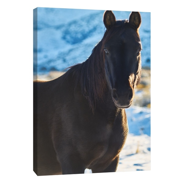 """PTM Images 9-108376 PTM Canvas Collection 10"""" x 8"""" - """"Horse Fort Ranch 7"""" Giclee Horses Art Print on Canvas"""