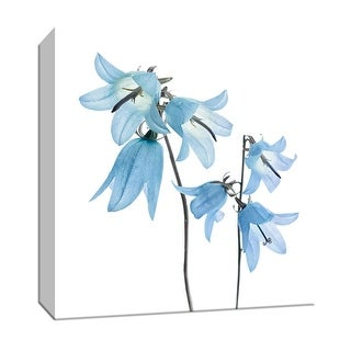 "PTM Images 9-147544  PTM Canvas Collection 12"" x 12"" - ""Gorgeous Blue IV"" Giclee Flowers Art Print on Canvas"