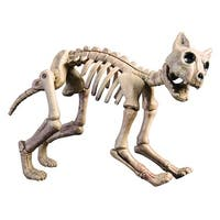 Skeleton Cat Halloween Decoration Prop