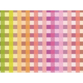 """Pack of 1, Rainbow Gingham 24"""" x 417' Half Ream Roll Gift Wrap for Party, Kids' Birthday, Wedding & Occasion"""