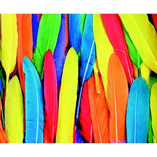 Creativity Street Short Colored Duck Quill, 3 to 5 Inches, Assorted Colors, 1/2 Ounce Bag