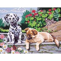 """Dogs Watching - Paint By Number Kit 12""""X16"""""""