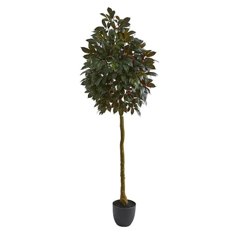 """Nearly Natural Home Decorative 75"""" Capensia Ficus Artificial Faux Tree - Not Available"""