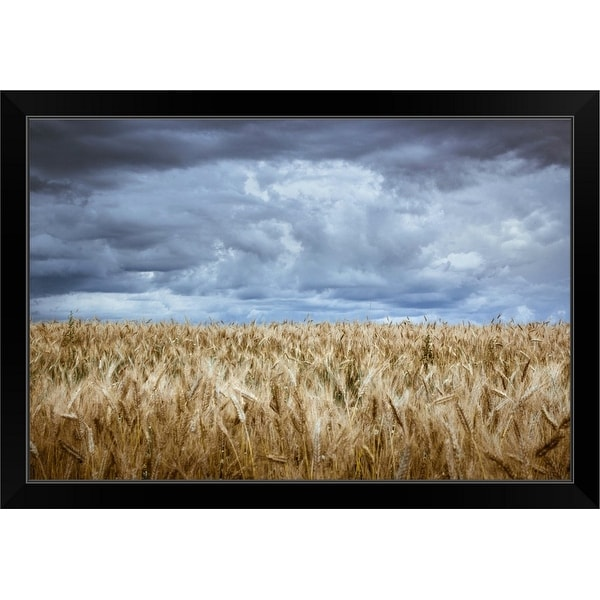 """""""Stormy sky over wheat field with long exposure"""" Black Framed Print"""