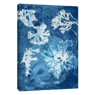 """PTM Images 9-105770  PTM Canvas Collection 10"""" x 8"""" - """"Natural Forms Blue 1"""" Giclee Seaweed Art Print on Canvas"""
