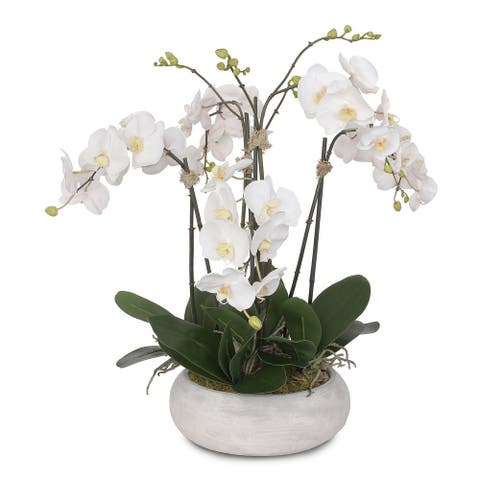 Two Tone White Silk Phalaenopsis Orchids Arrangement in Pot - 25W x 22D x 24H