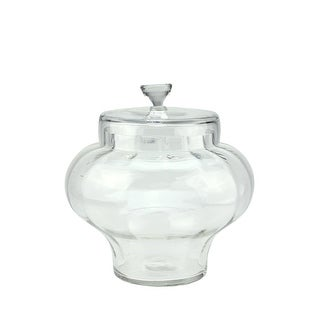 """11"""" Transparent Segmented Glass Container with Lid"""