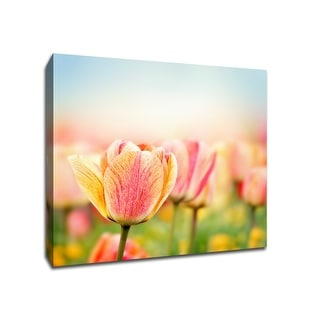 Spring Tulip - Flowers - 20x20 Gallery Wrapped Canvas Wall Art