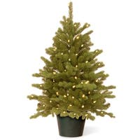3' Pre-lit Potted Hampton Spruce Artificial Christmas Tree – Clear Lights - Green