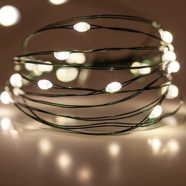 Wintergreen Lighting 50137 18 Bulb Battery Operated Warm White Fairy LED Lights - Warm White - N/A