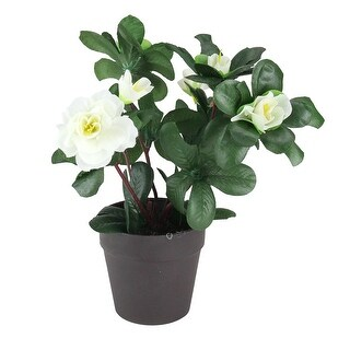 """8"""" Green and White Potted Artificial Begonia Plant - N/A"""