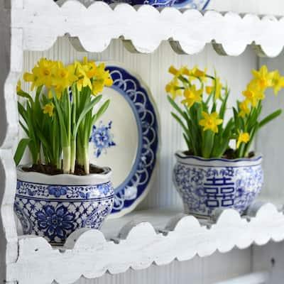 ClayBarn Blue and White Terrace Garden Planter Set