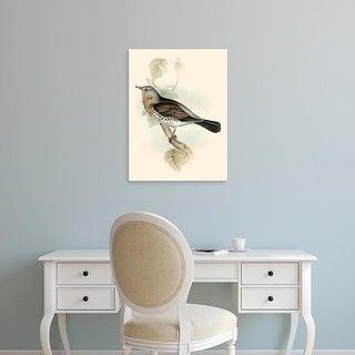 Easy Art Prints John Gould's 'Gould's Fieldfare' Premium Canvas Art