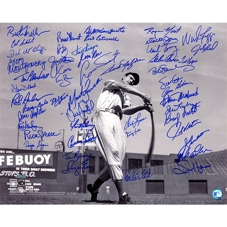 "Boston Red Sox Multi Signed B&W ""Ted Williams Horizontal"" 16x20 Photo FiskKellBoggsRiceEvansLynnTiantLonborg"