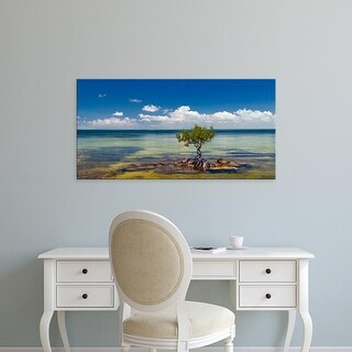 Easy Art Prints Panoramic Image 'Single Mangrove tree in the Gulf of Mexico in the Florida Keys, Florida' Canvas Art
