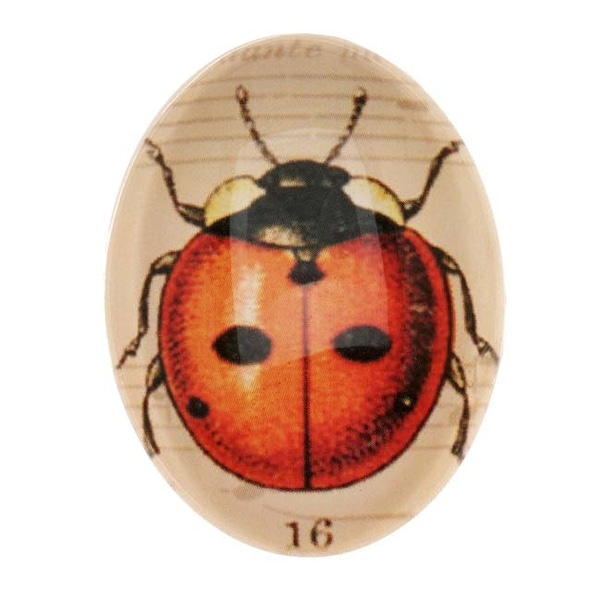 Tempered Glass Oval Cabochons Vintage Style With Red Ladybug 30x40mm (1)