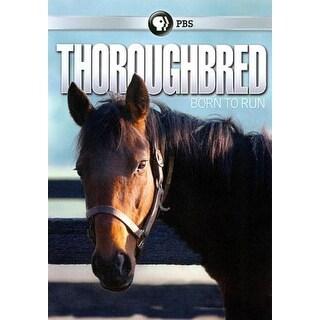 Thoroughbred: Born to Run - DVD
