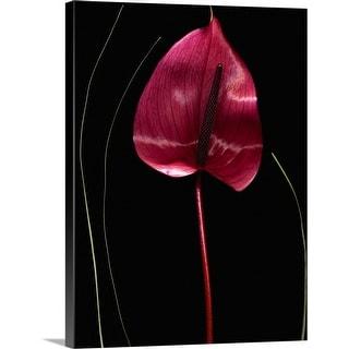 """Red Anthurium"" Canvas Wall Art"