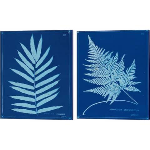 Unknown 'Cyanotype Ferns A' Canvas Art (Set of 2)