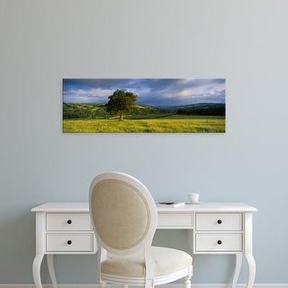 Easy Art Prints Panoramic Image 'Oak tree in a field, Southwood farm, Exe Valley, Bickleigh, Devon, England' Canvas Art