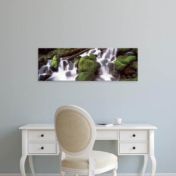 Easy Art Prints Panoramic Image 'Cascading waterfall in a rainforest, Olympic National Park, Washington' Canvas Art