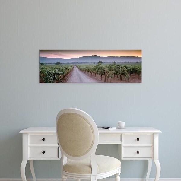 Easy Art Prints Panoramic Images's 'Road in a vineyard, Napa Valley, California, USA' Premium Canvas Art