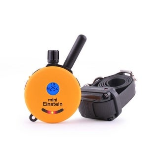 E-Collar Technologies Mini Einstein ET-300TS 1 Dog Remote Trainer