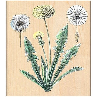 """Penny Black Mounted Rubber Stamp 4""""X4.5""""-Dandelions"""