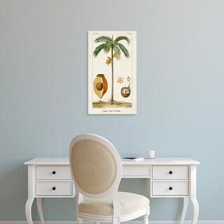 Easy Art Prints Turpin's 'Turpin Exotic Palms V' Premium Canvas Art
