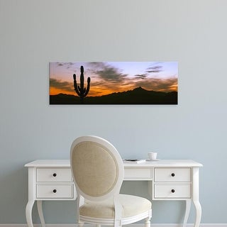 Easy Art Prints Panoramic Image 'Silhouette of Cardon Cactus, Cerritos, Baja California Sur, Mexico' Canvas Art