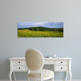 Easy Art Prints Panoramic Images's 'Fence in a field, Illinois, USA' Premium Canvas Art