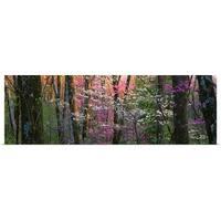 Poster Print entitled Virginia, Shenandoah National Park - Multi-color