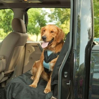 Bergan Dog Travel Harness Medium Blue